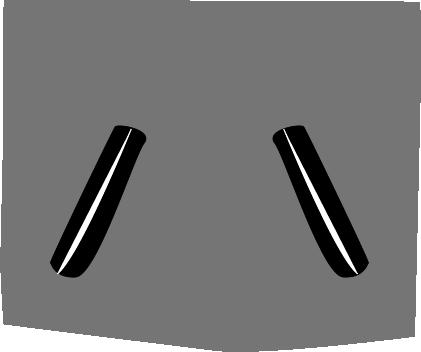 buši 9